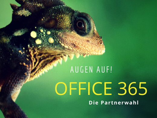 Der richtige Office 365-Partner