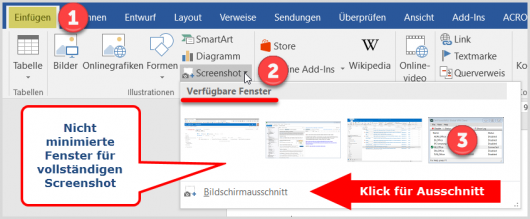 Screenshot in Word-Dokument einfügen